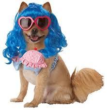 Puppy Dog Fashion show